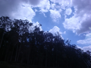 Foto tirada no carro, na estrada de ida para Fernandópolis na virada do ano